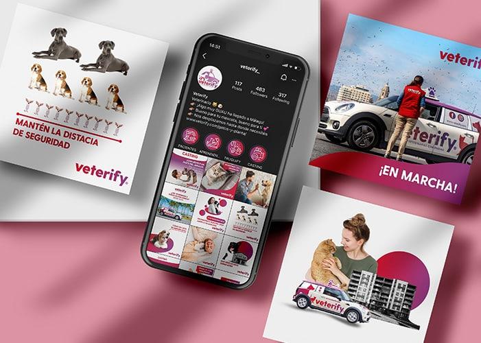 veterify-web